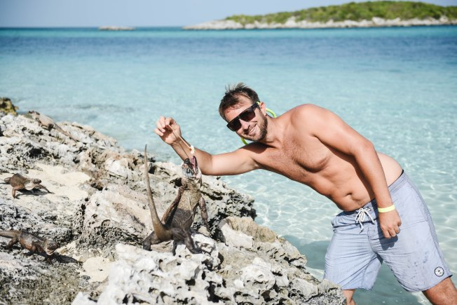 Swimming with the Pigs & Nurse Sharks in the Bahamas – @eliseypie